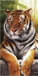 Serviette de plage Tigre Marron 90x170